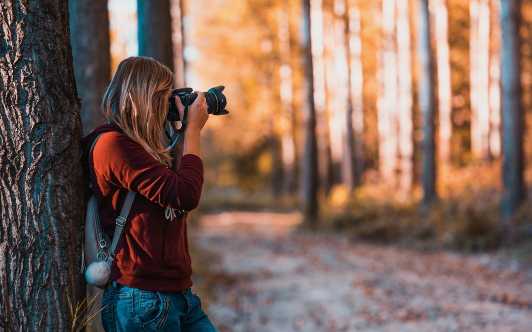 Produce Wonderful Pictures With These Fundamental Tips